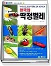 한국의 딱정벌레