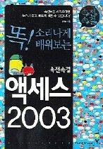 속전속결 액세스 2003