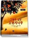 그림자 없는 오렌지 나무
