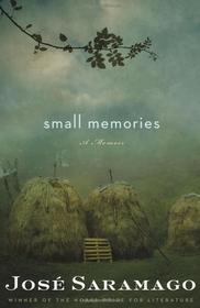 Small Memories (Paperback)