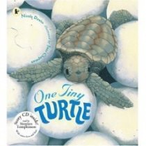 One Tiny Turtle (Paperback +CD)