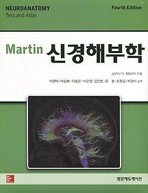 Martin 신경해부학