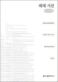 헤세 시선 (큰글씨책)
