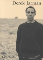 Derek Jarman: A Biography (Hardcover)