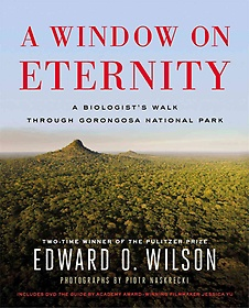 A Window on Eternity (Hardcover)