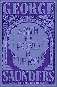 A Swim in a Pond in the Rain (Hardcover)