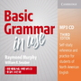 BASIC GRAMMAR IN USE - CD(3/E)