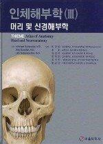 인체해부학 3 - 머리 및 신경해부학