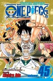 One Piece Vol.45 (Paperback)