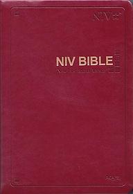 영문NIV성경 (대/단본/색인/무지퍼/와인)