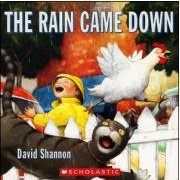 The Rain Came Down (Paperback)