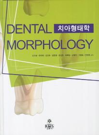 치아형태학