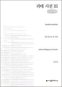 괴테 시선 3 (큰글씨책)