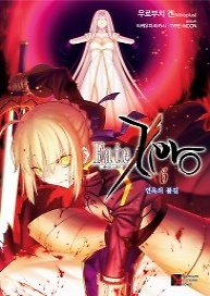 소설 Fate Zero 6