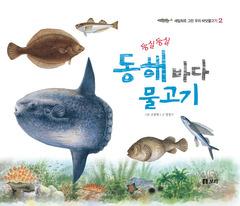 둥실둥실 동해 바다 물고기