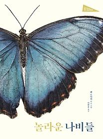 놀라운 나비들