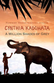A Million Shades of Grey (Paperback)