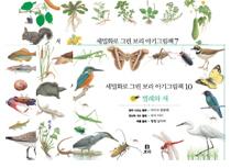 세밀화로 그린 보리 아기그림책 세트 (6~10권)