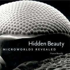 Hidden Beauty: Microworlds Revealed (Hardcover)