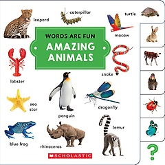 Amazing Animals (Hardcover / Board Book)
