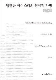 빌헬름 마이스터의 연극적 사명 (큰글씨책)