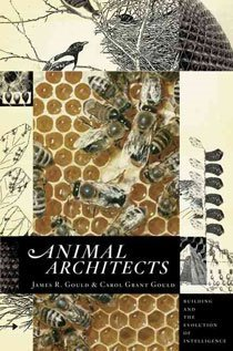Animal Architects: Building and the Evolution of Intelligence (Hardcover)
