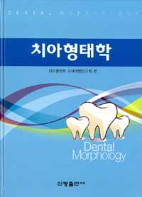 치아형태학 =Dental morphology