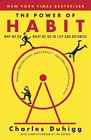 The Power of Habit (Paperback)
