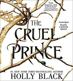 The Cruel Prince (CD / Unabridged)
