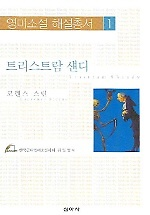 트리스트람 섄디 - 영미소설 해설총서 1
