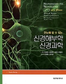 (한눈에 알 수 있는) 신경해부학 신경과학