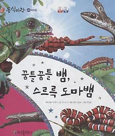 동식이랑 49 꿈틀꿈틀 뱀, 스르륵 도마뱀