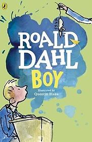 Boy: Tales of Childhood (Paperback)