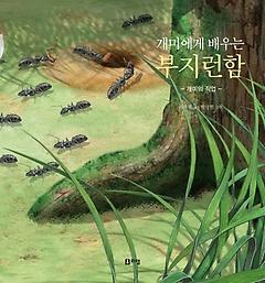 개미에게 배우는 부지런함
