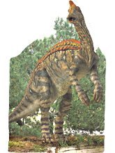 Corythosaurus Board Book (Board book)