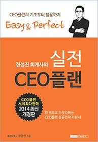 정성진 회계사의 실전 CEO 플랜 (2014)