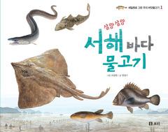 살랑살랑 서해 바다 물고기