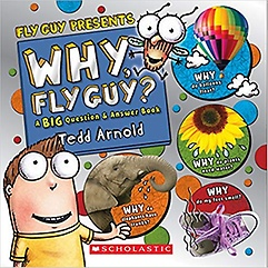 Why, Fly Guy? (Hardcover)