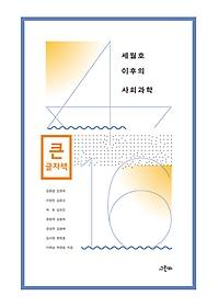 세월호 이후의 사회과학 (큰글자책)