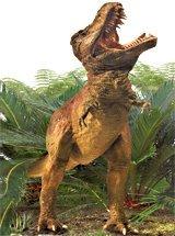 Tyranosaurus Rex Board Book (Board book)