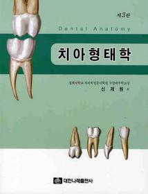 치아형태학=Dental anatomy