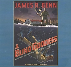 A Blind Goddess (CD / Unabridged)