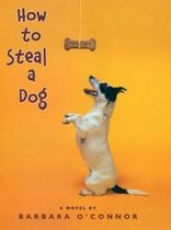 How to Steal a Dog (Hardcover)