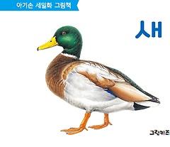 아기손 세밀화 그림책 새