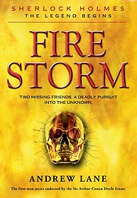 Fire Storm (Hardcover)