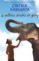 A Million Shades of Gray (Paperback)