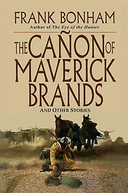 The Canon of Maverick Brands (Paperback)