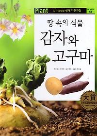 땅 속의 식물 감자와 고구마