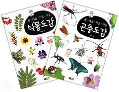 봄 여름 가을 겨울 식물도감 + 곤충도감 세트