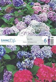 리빙라이프 LIVING life (월간) 6월호
